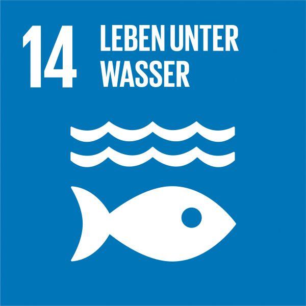 Ziele nachhaltige Entwicklung - Leben unter Wasser