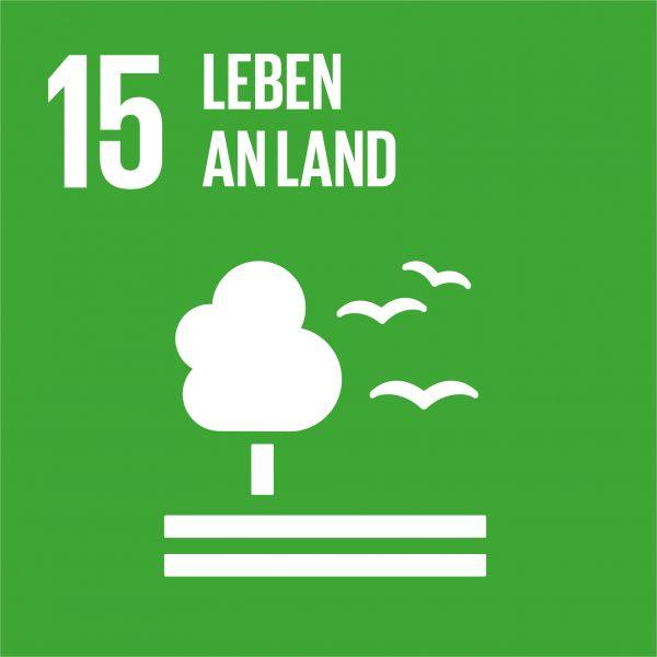 Ziele nachhaltige Entwicklung - Leben an Land