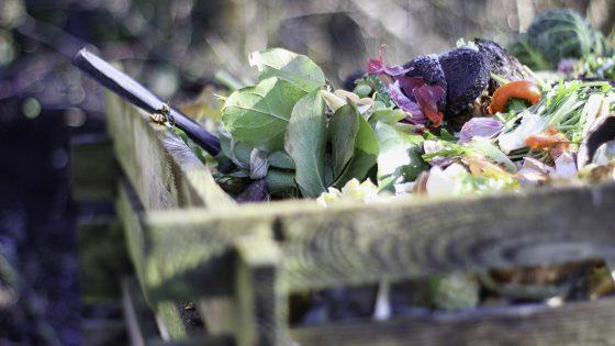 gesammelter Kompost im Garten