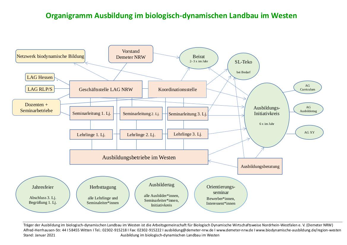 Organigram Ausbildungsregion Westen
